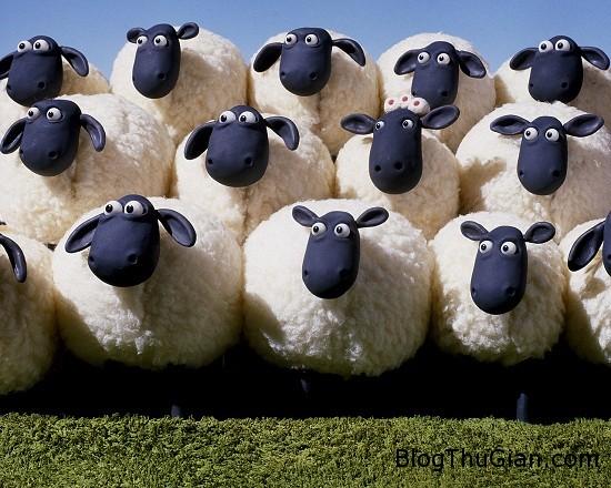 Nằm chiêm bao thấy con cừu là điềm báo hạnh phúc
