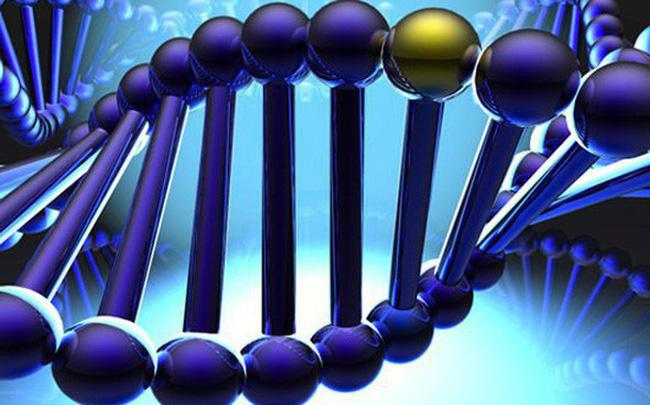 Vingroup đầu tư 4,5 triệu USD để nghiên cứu giải mã gen người Việt