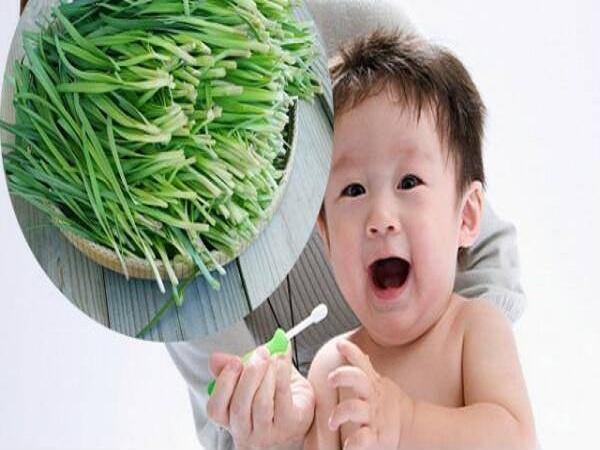 Cách trị ho cho trẻ sơ sinh bằng lá hẹ