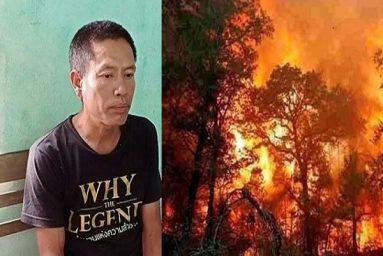 Khởi tố, bắt tạm giam kẻ liên quan đến vụ cháy rừng ở Hà Tĩnh